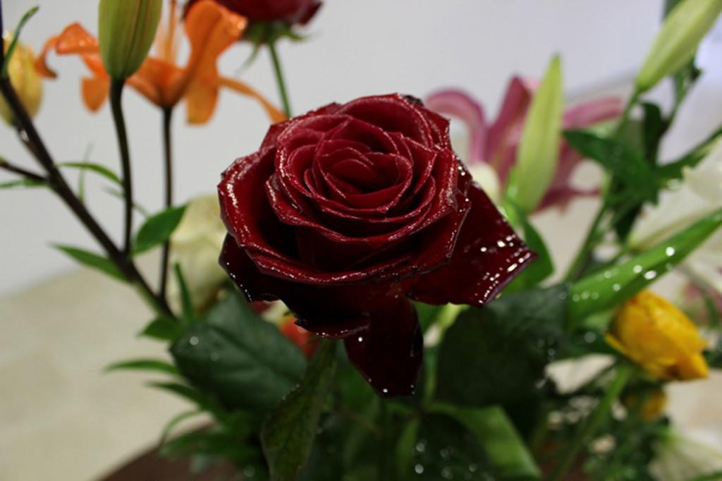 Bouquet de fleurs 300dpi