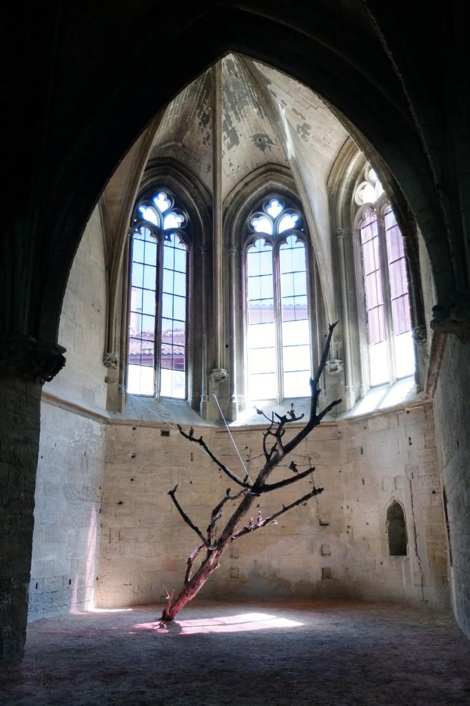 Danse macabre, 2014, installation, dimensions variables, arbre mort, pigeons morts.